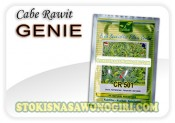 benih cabe rawit genie