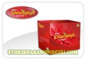 red chlorophyll
